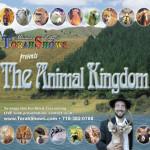 17a) Animal Show