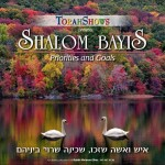 20)-Shalom-Bayis-Success-at-Home-2